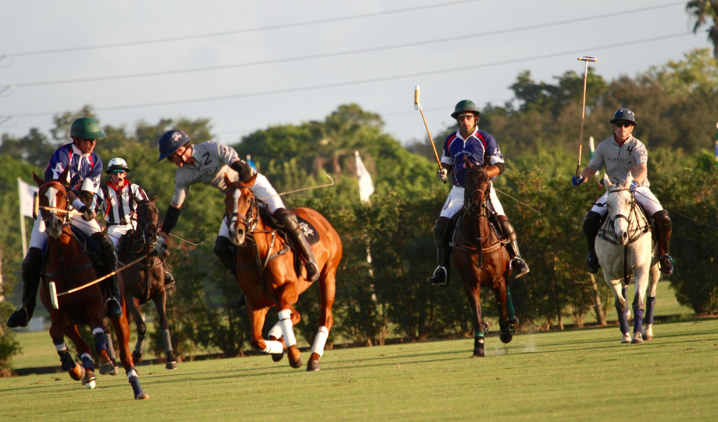 Jeff Hall of American Polo Horse go.jpg