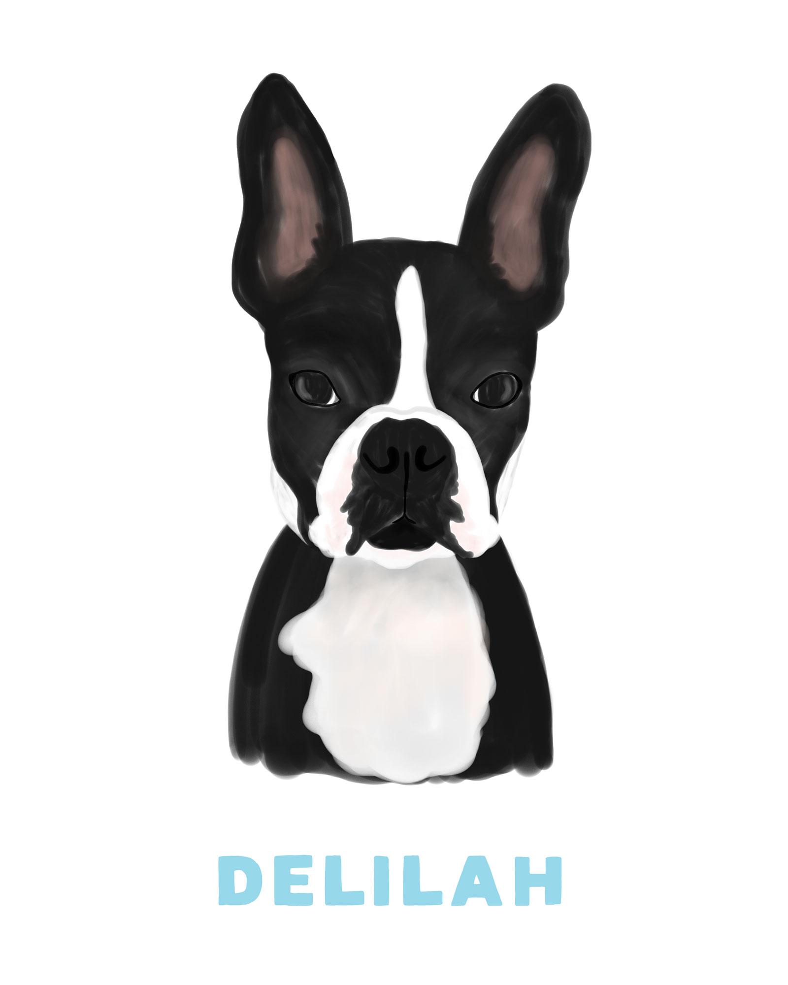 Delilah-Dog-Portrait.jpg