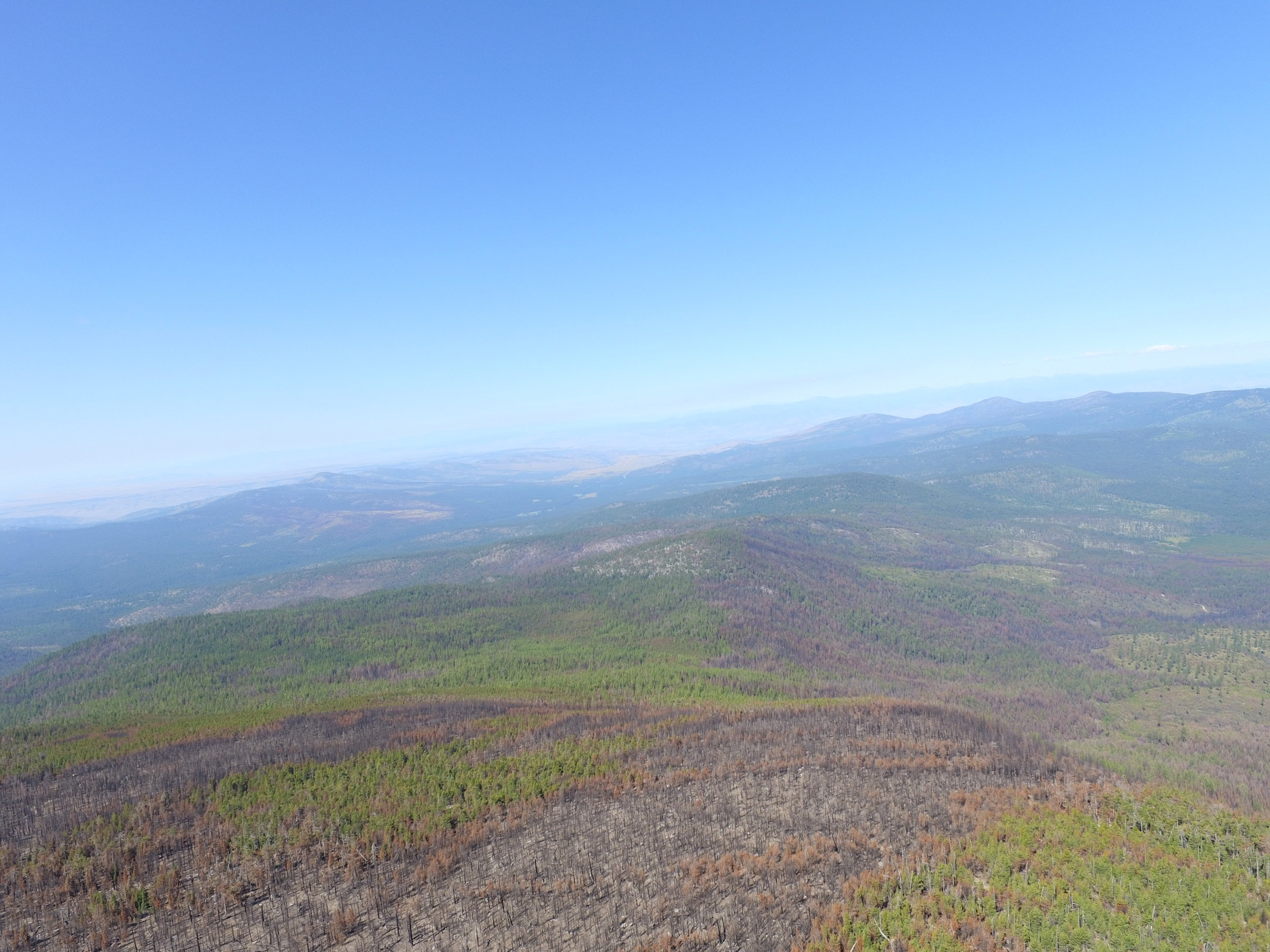 Moses Mt Scenery