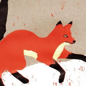Fox-in-snow_RRuzicka_web-crop-2.jpeg