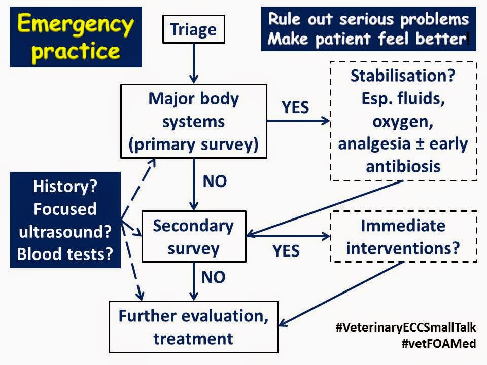 Overview of emergency approach