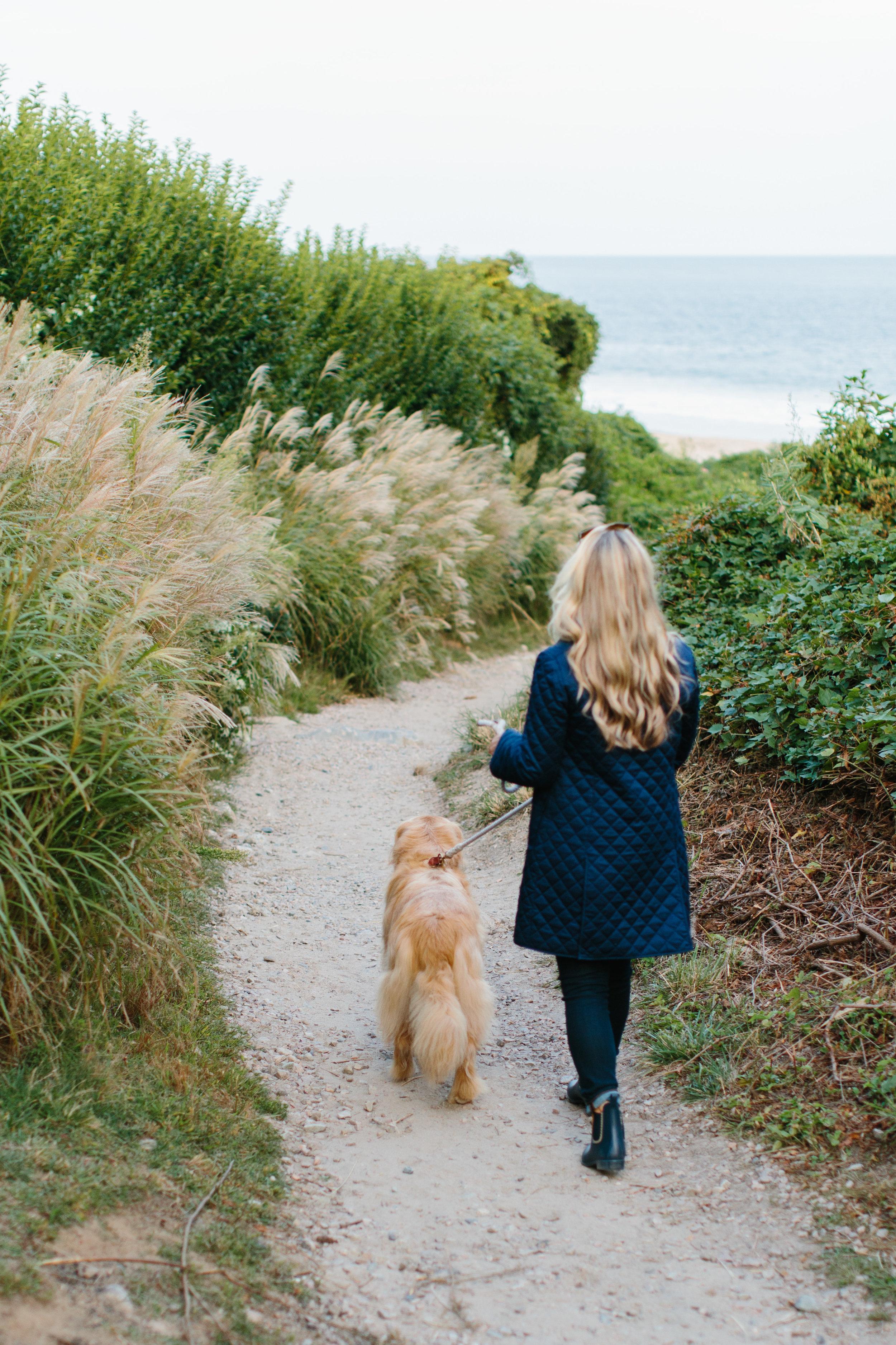 New England Blogger Watch Hill Golden Retriever