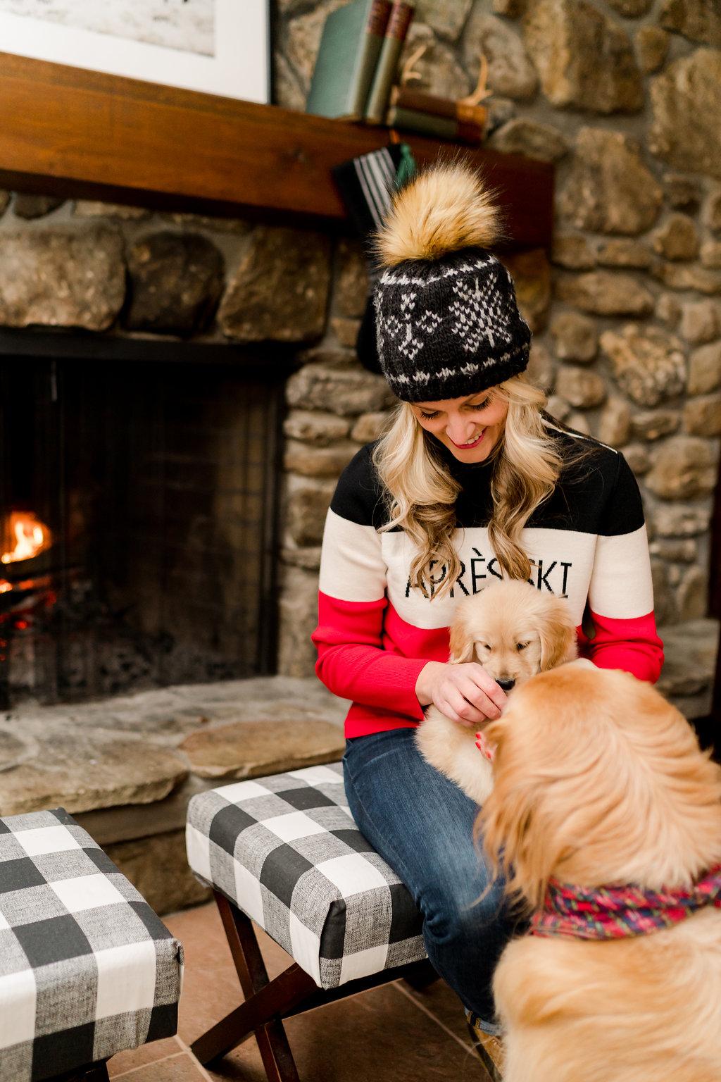 Vermont Ski House Design Golden Retriever Puppy