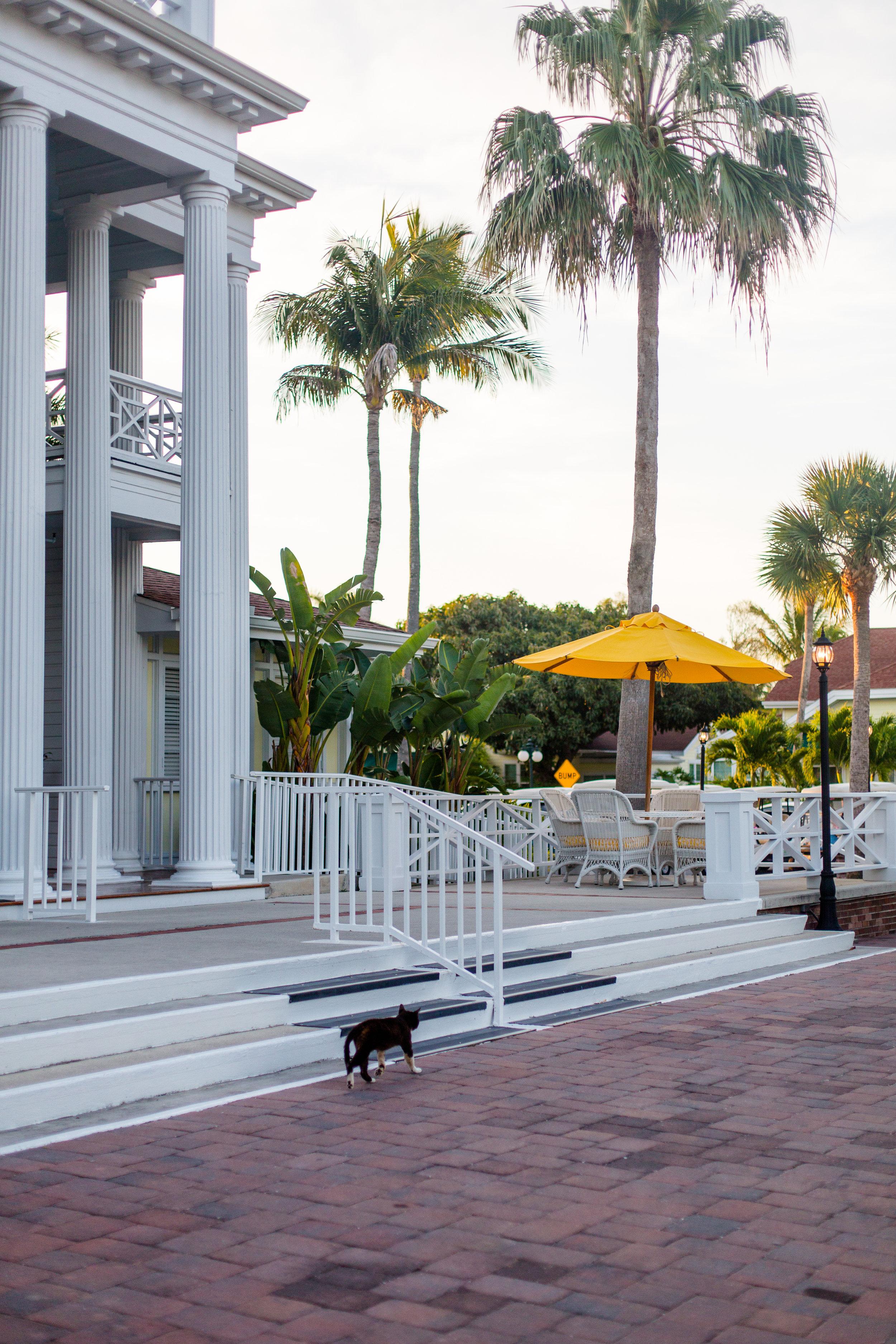 Boca Grande Florida Gasparilla Travel Guide from Abby Capalbo