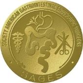 SAGES Metal Logo.jpg