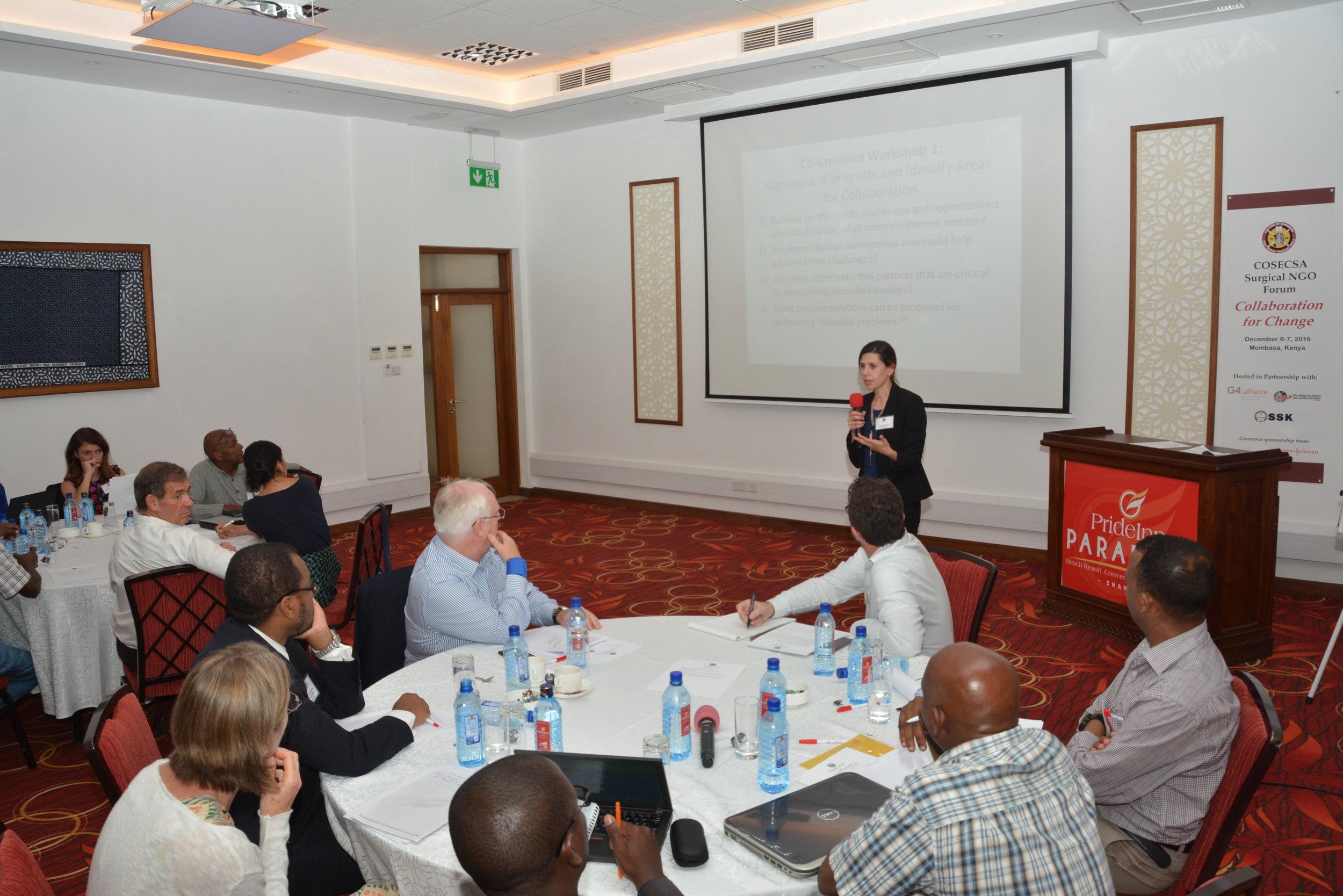 COSECSA Surgical NGO Forum (113).JPG