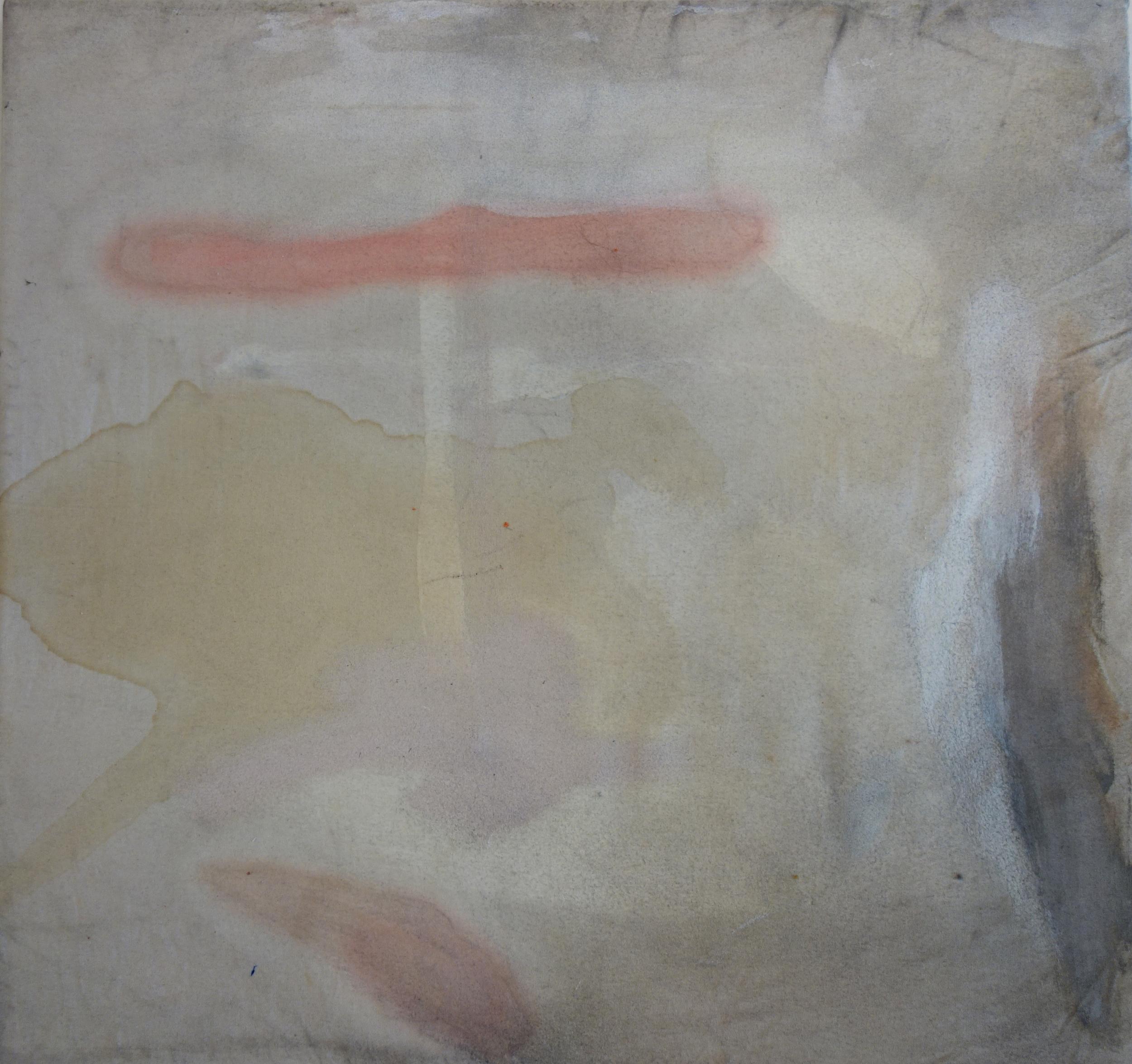 Ariel Baldwin