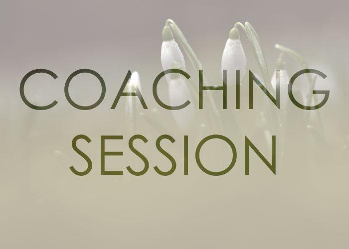 Coaching-session.jpg