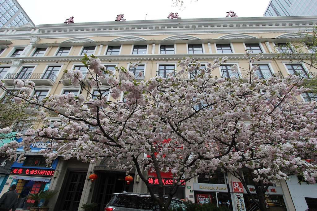 The facade of the Far Eastern Hotel fronted by gorgeous cherry blossoms
