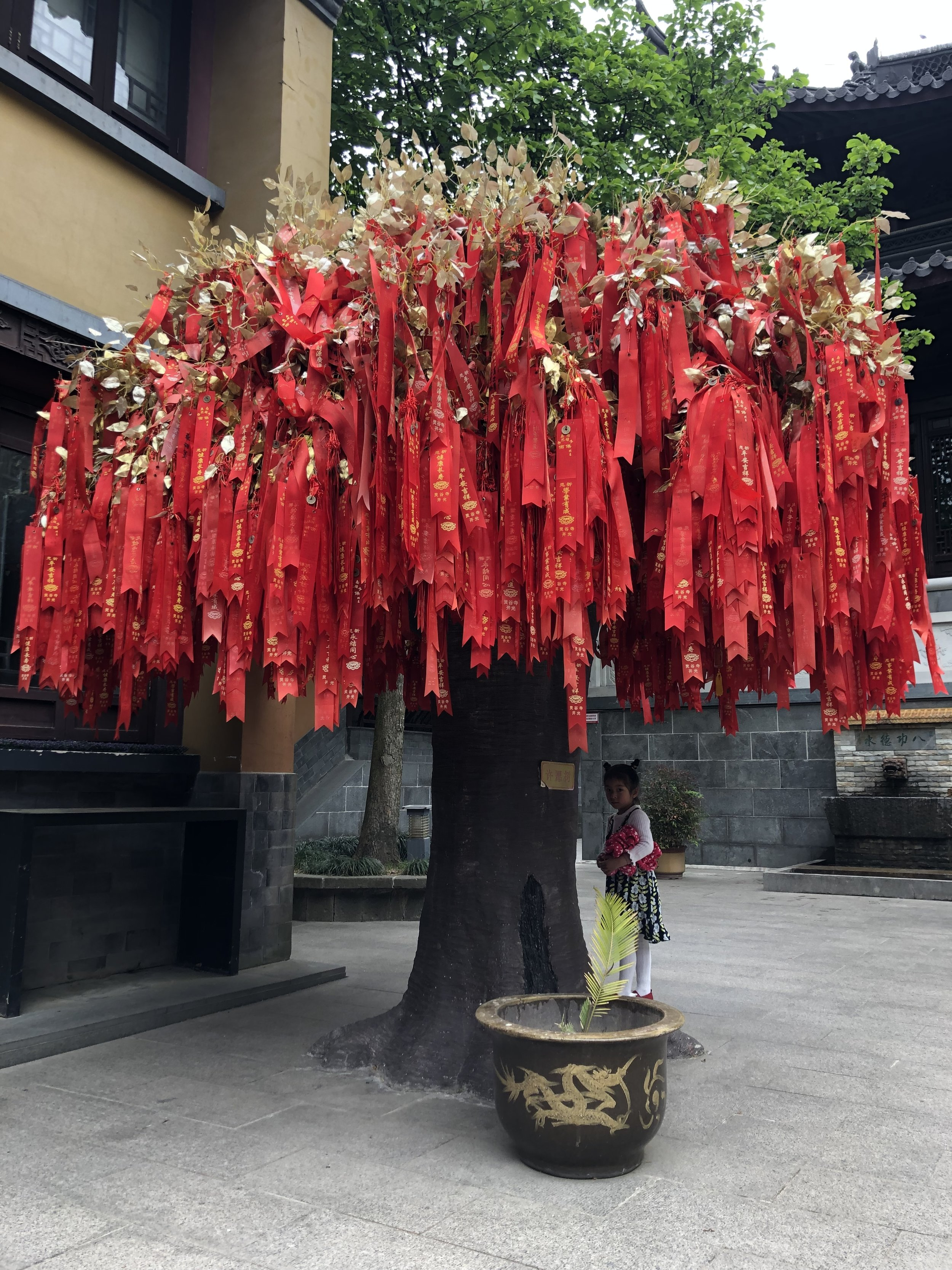 A blessing tree inside the Linggu Temple