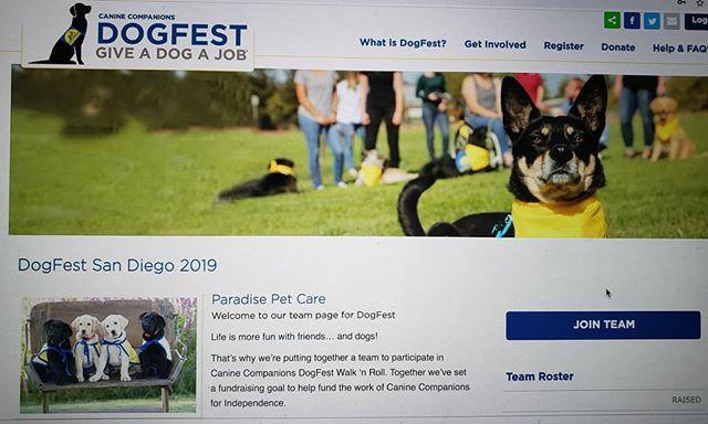 #DogFest2019 #joinourteam