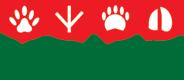 Vadodara Centre for Animal Rescue & Emergency - Aashiayana,Lakdikui Village, near JaspurPadra Taluka, Vadodara – 391 440Gujarat INDIA