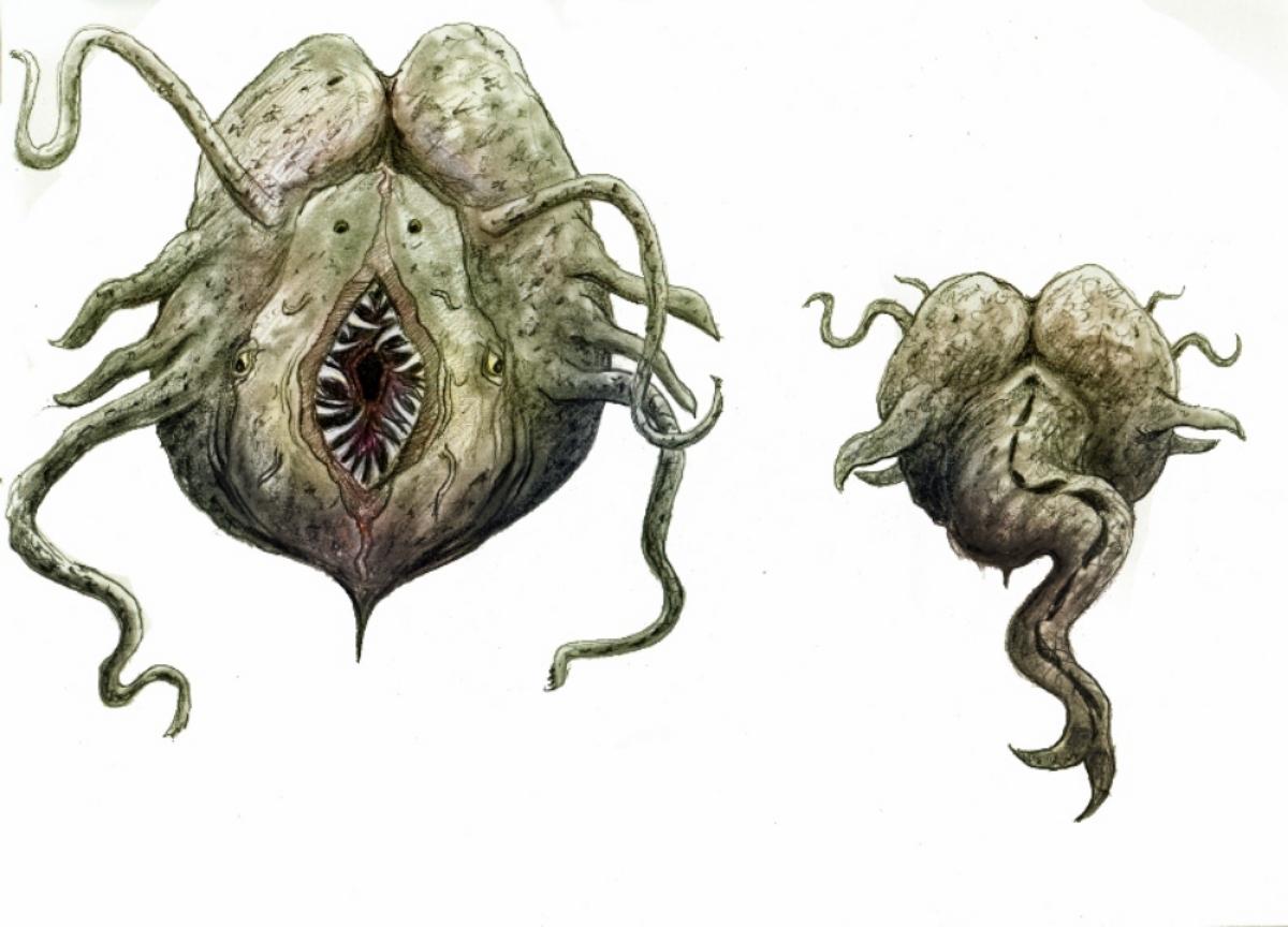 Artwork for GITASKOG monster design by Damien and Gregory Slevin.