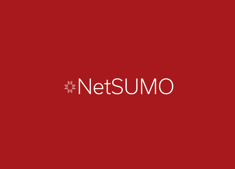 netsumo slide (1).png