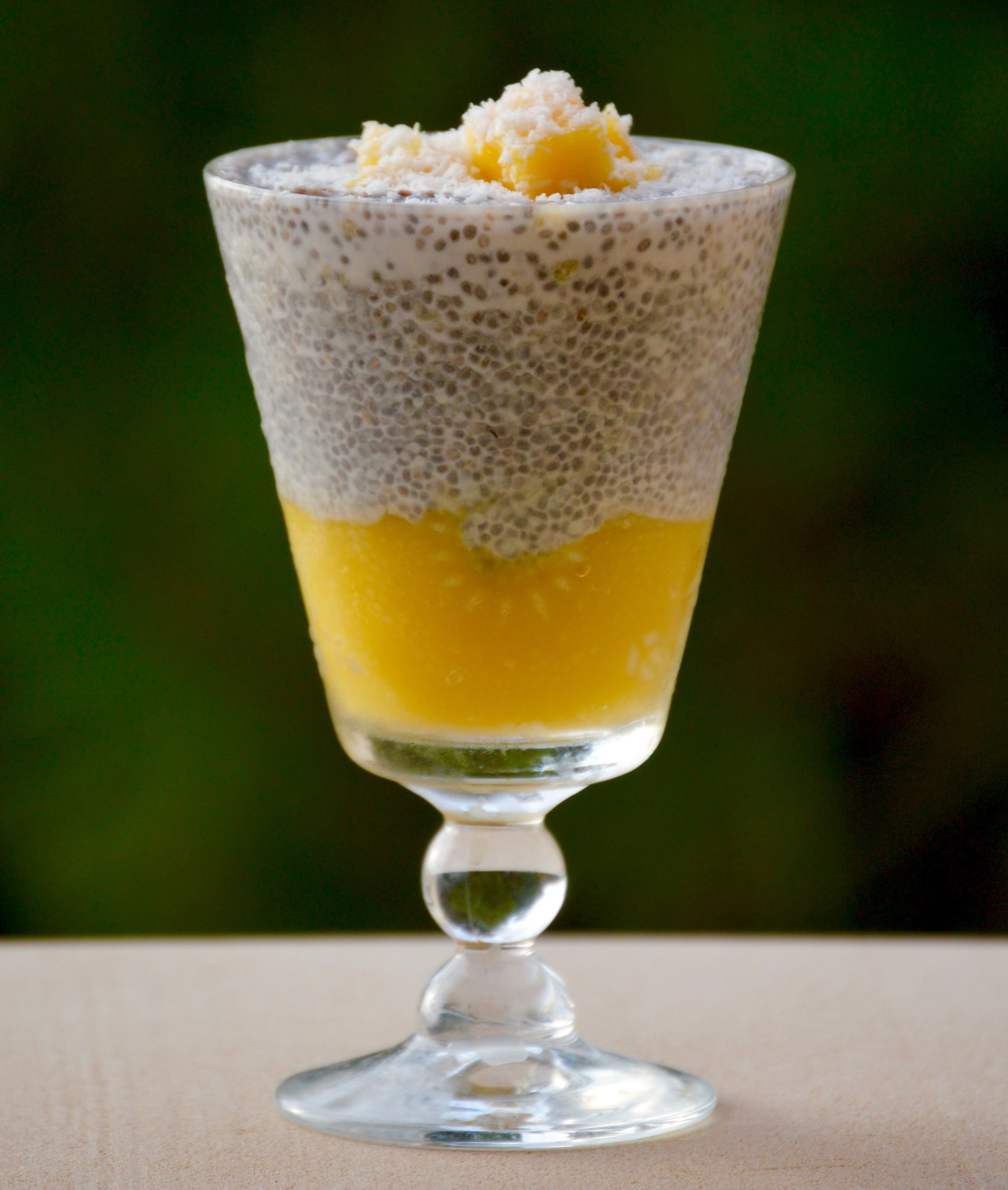 coconut cream mango puree chia pudding