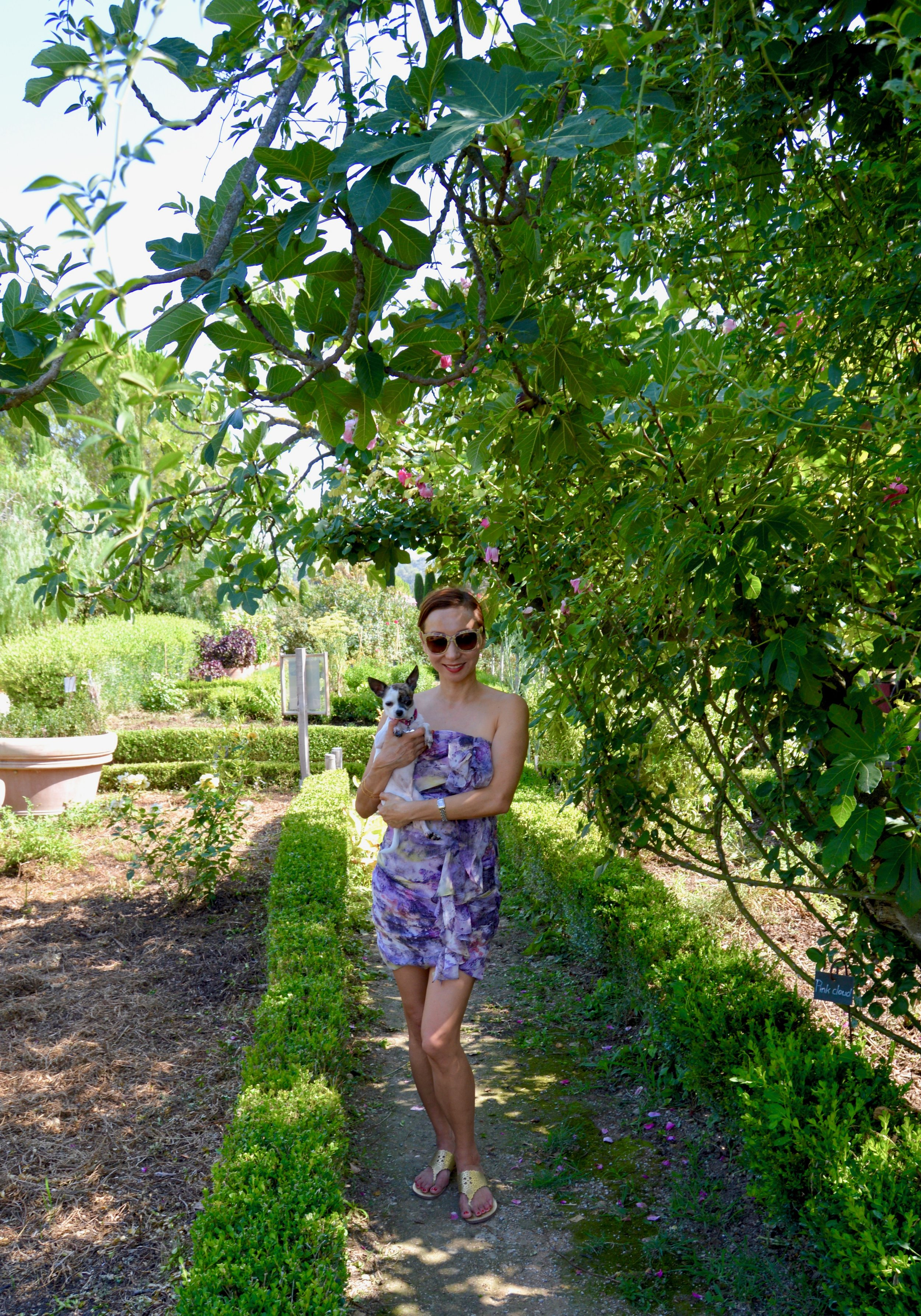 The gardens of the International Museum of Perfume with our family chihuahua.