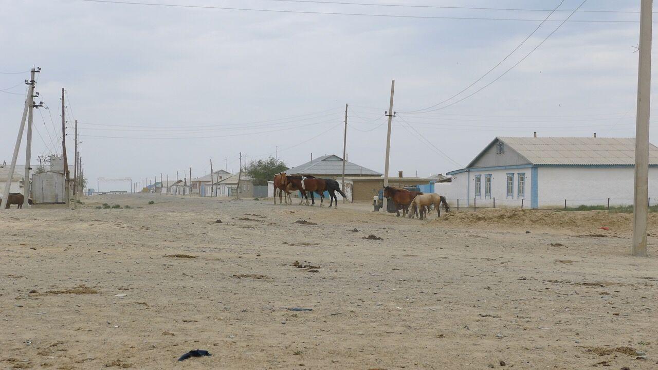 Aral Sea, Peter Cusack
