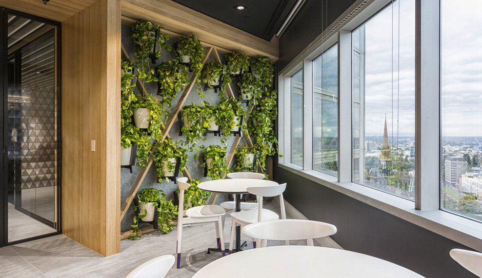 GrowSPACE Indoor Plants