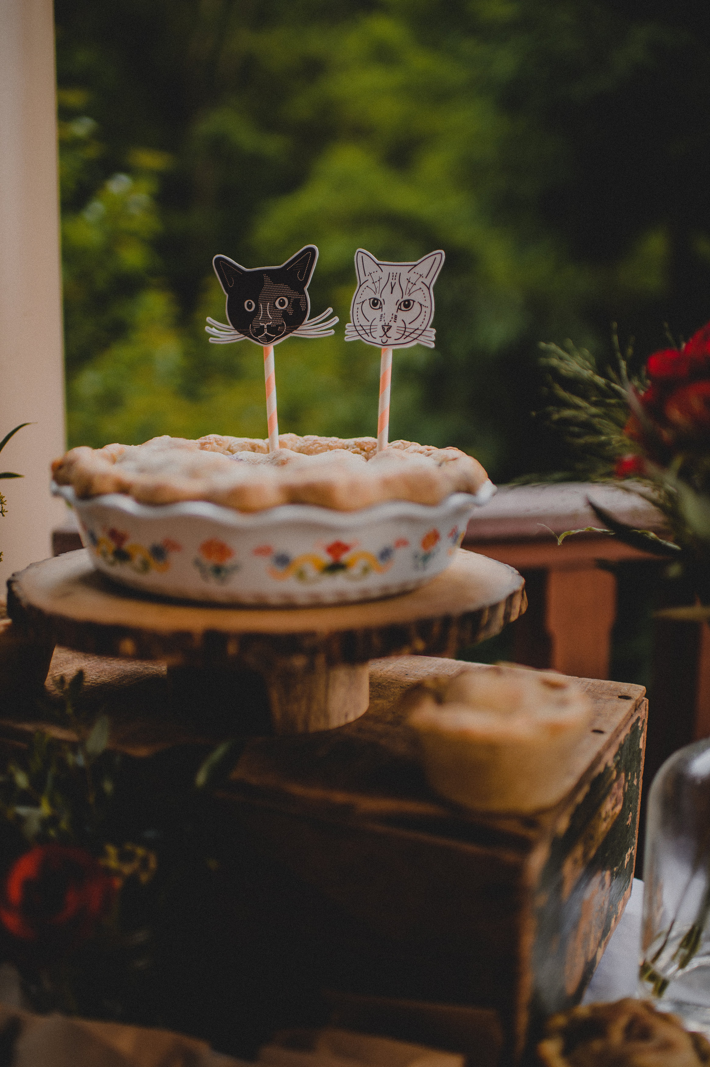 skirven & croft pie with cat faces on toothpicks