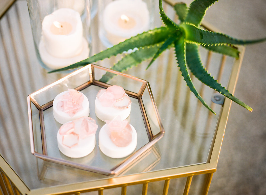 Jessica Schilling Wedding Photography aloe plant and pastries
