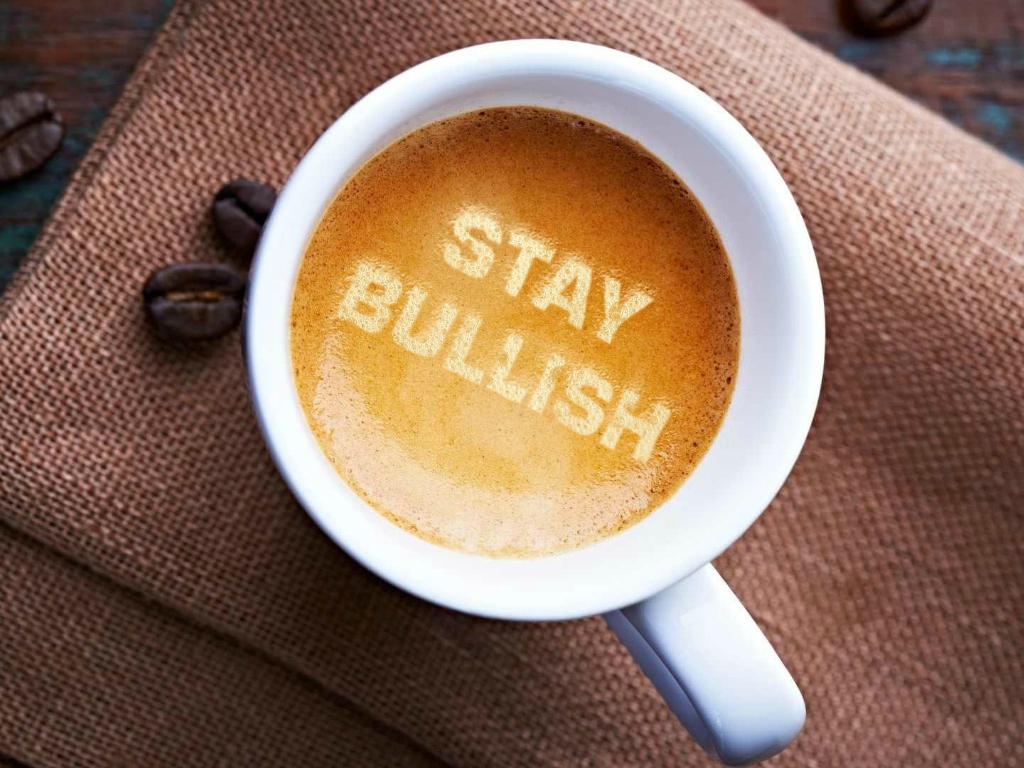 Stay Bullish Holiday Gift Guide