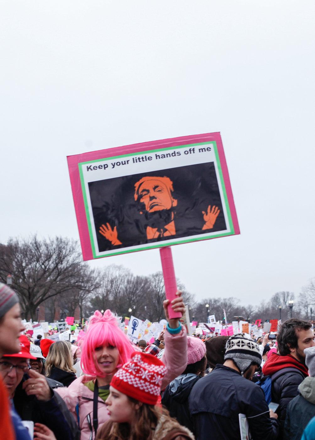 Women's March on Washington Zig Metzler - Keep Your Little Hands Off Me