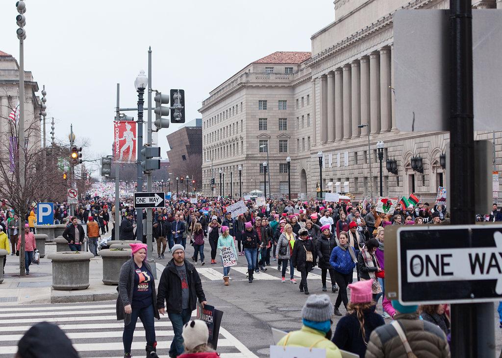 Women's March on Washington Zig Metzler