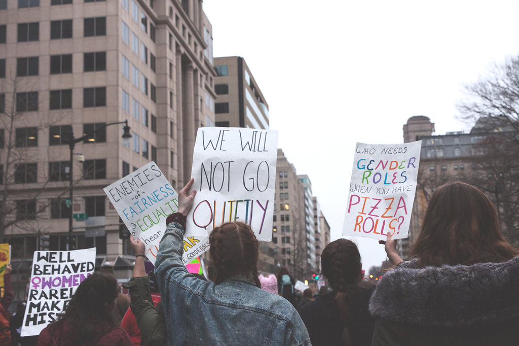 We Will Not Go Quietly, Well Behaved Women Rarely Make History, Enemies of Fairness and Equality Hear Our Roar -Women's March on Washington Zig Metzler