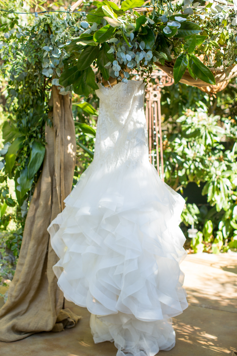 Wedding gown hanging in a tree in the sunshine