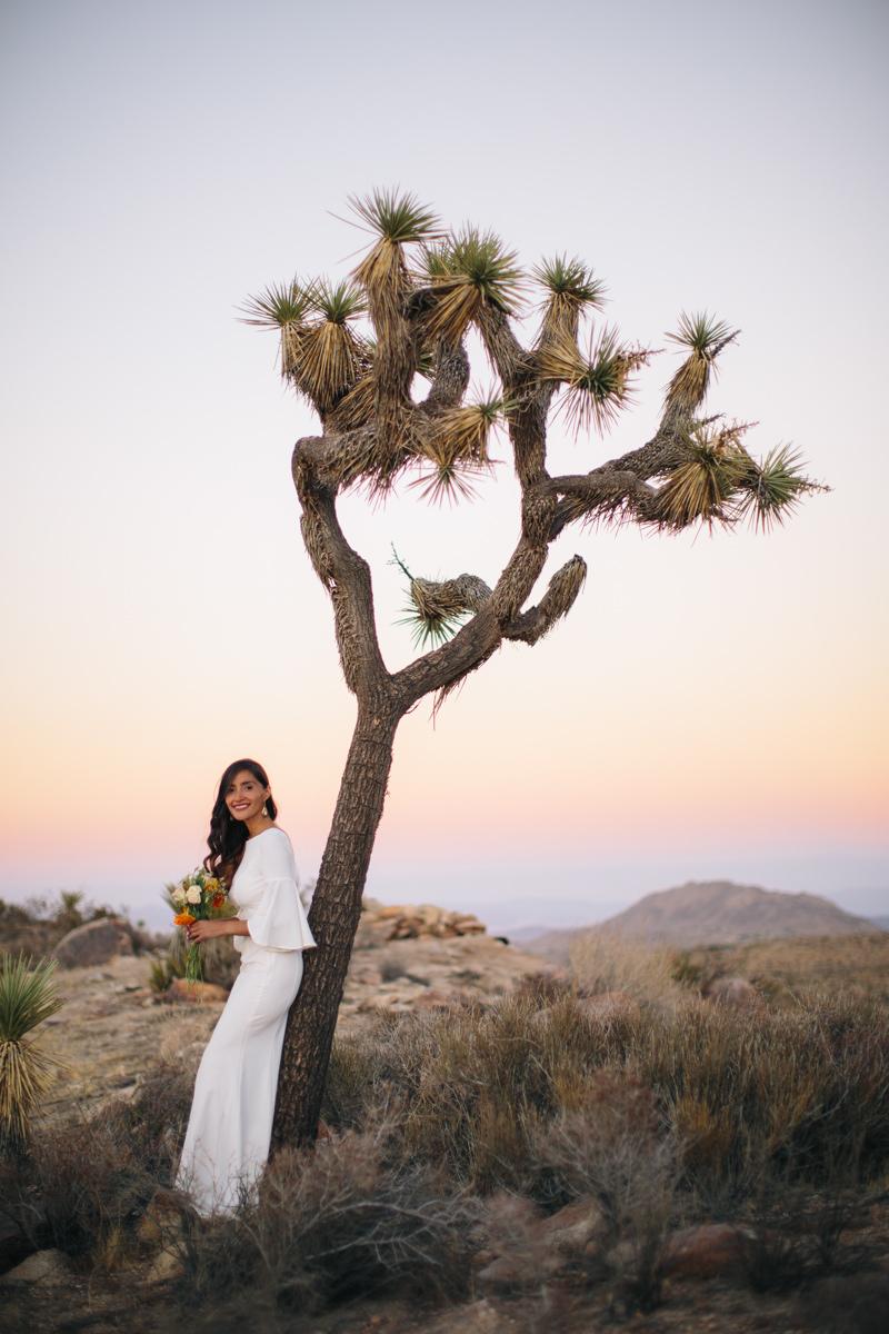 Bride posing with a Joshua Tree
