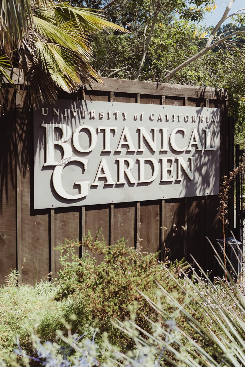 "UC berkeley garden wedding sign reading ""university of california botanical garden"""
