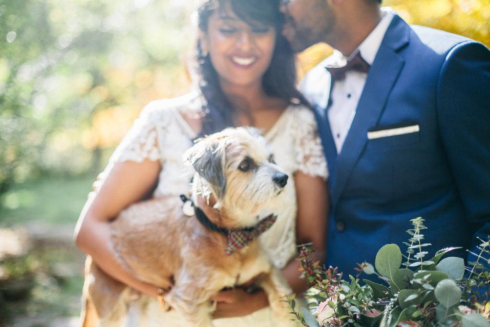Samantha+Lauren+Photographie+Fall+Airbnb+Wedding (1).jpeg
