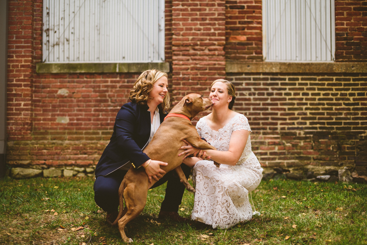 BALTIMORE WEDDING AT MOUNT WASHINGTON MILL DYE HOUSE COUPLE WITH LOVEY THE DOG, LOVEY LICKING MEG'S FACE