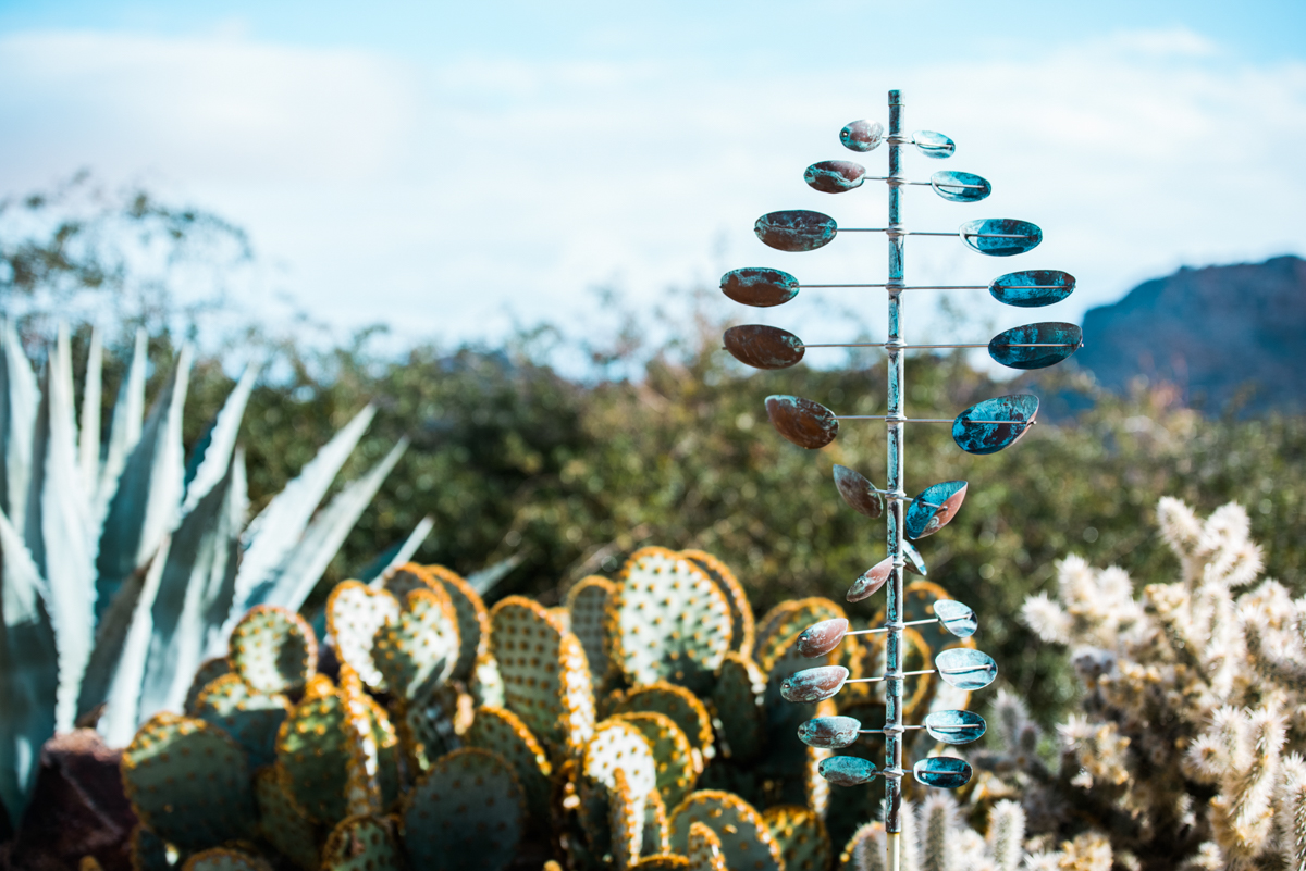 multi-cultural desert elopement decoration with cacti in background
