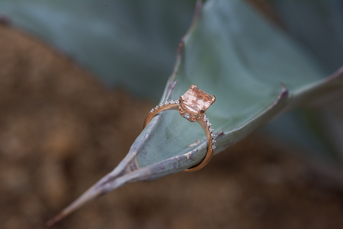 multi-cultural desert elopement ring on the end of a succulent