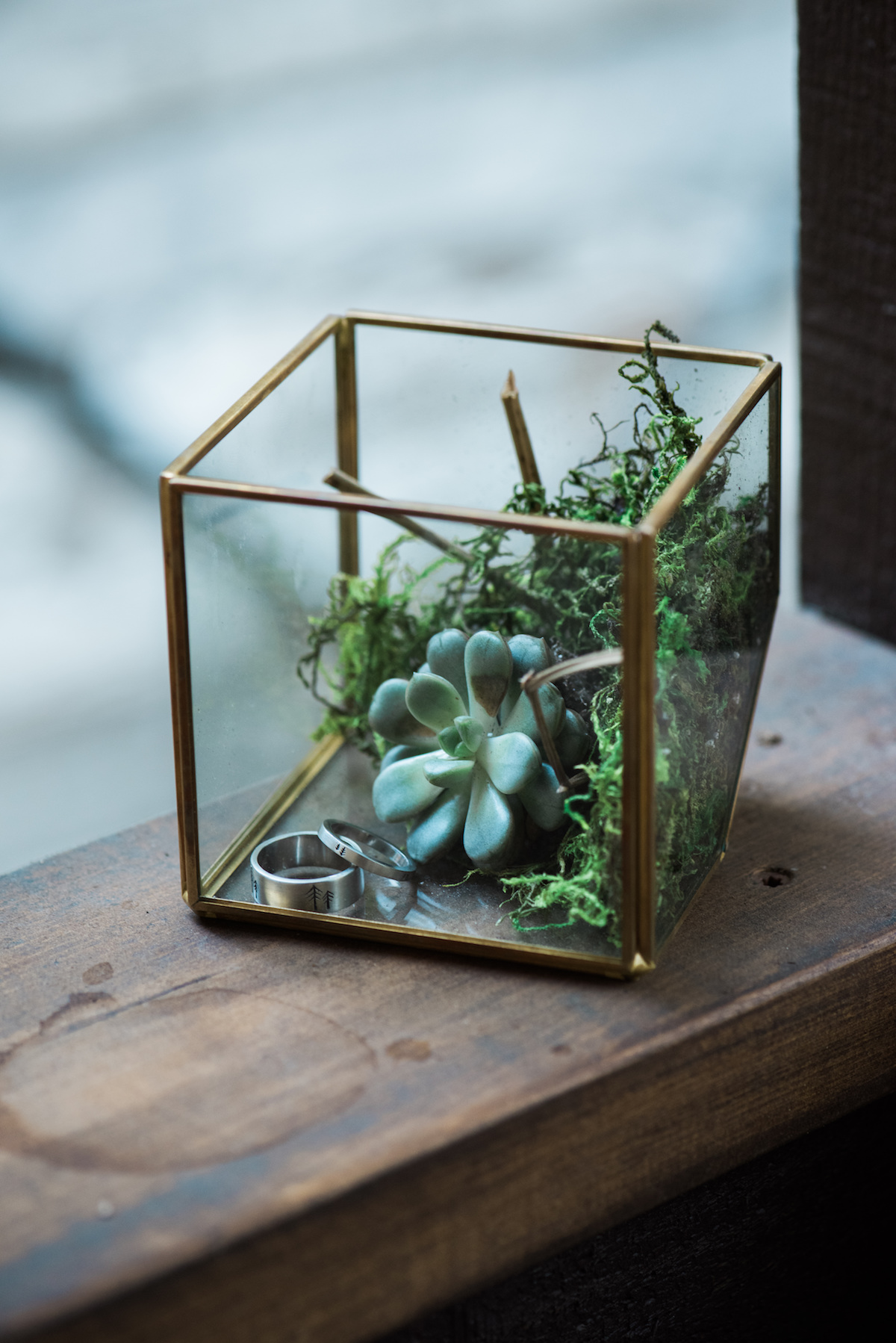 circle oak ranch farm wedding california square TERRARIUM on windowsill holding succulent and grooms' wedding rings