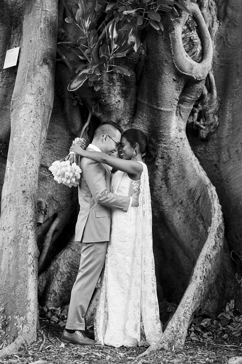 sri lankan, chinese, and harry potter wedding sydney australia hasara and daniel embrace under twisted tree