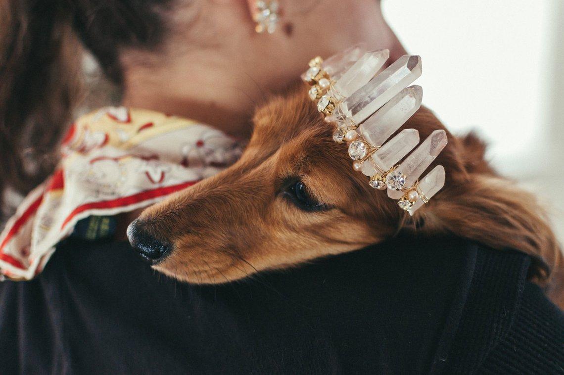 Rue Rose Quartz Glamorous Crystal Wedding Tiara for Dogs by Emma Katza Bridal