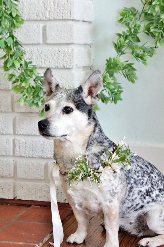 Floral Wreath Dog Collar by Fashion Touch Weddings