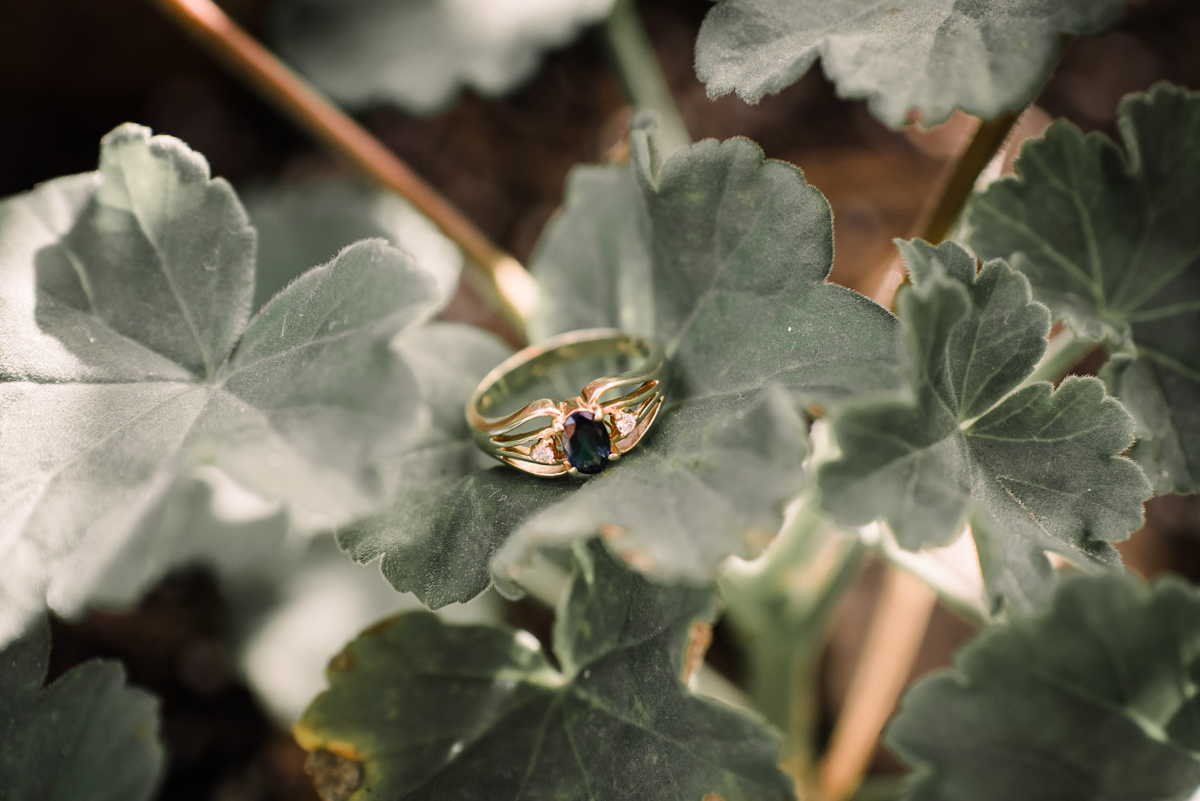 intimate wedding richmond virginia gold ring on plant leaf