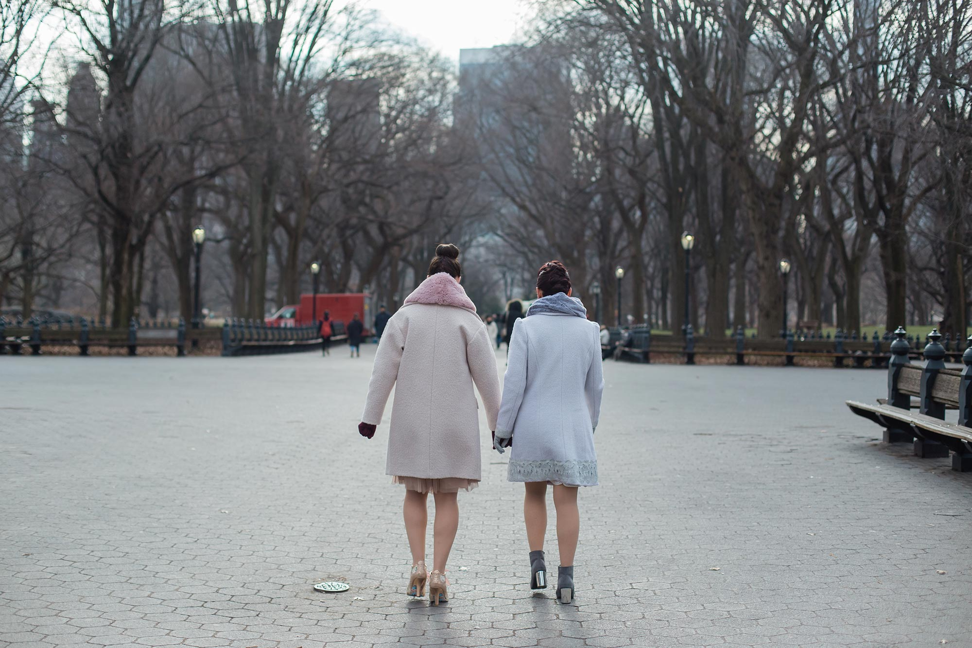 queer irish central park winter elopement kate alison photography couple holding hands walking on path