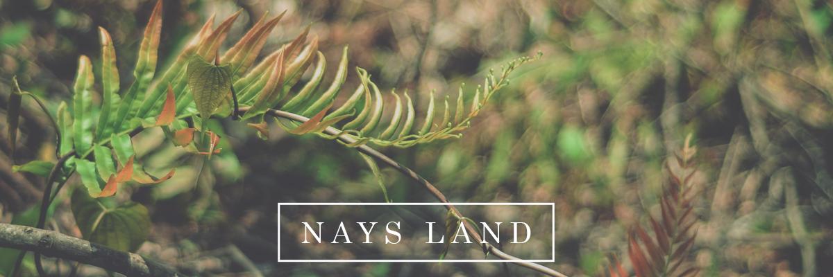nays-land-header