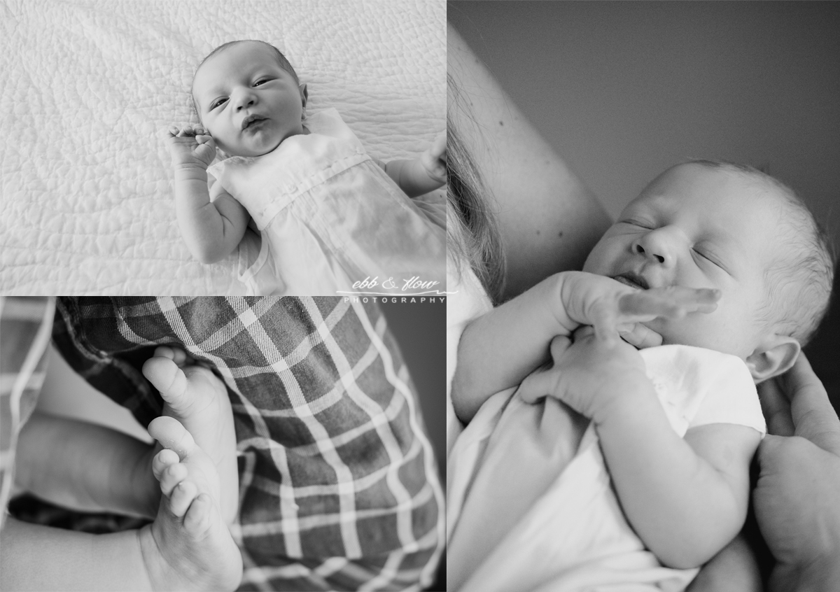 Baby Boy Lifestyle Session - Ebb and Flow Photography