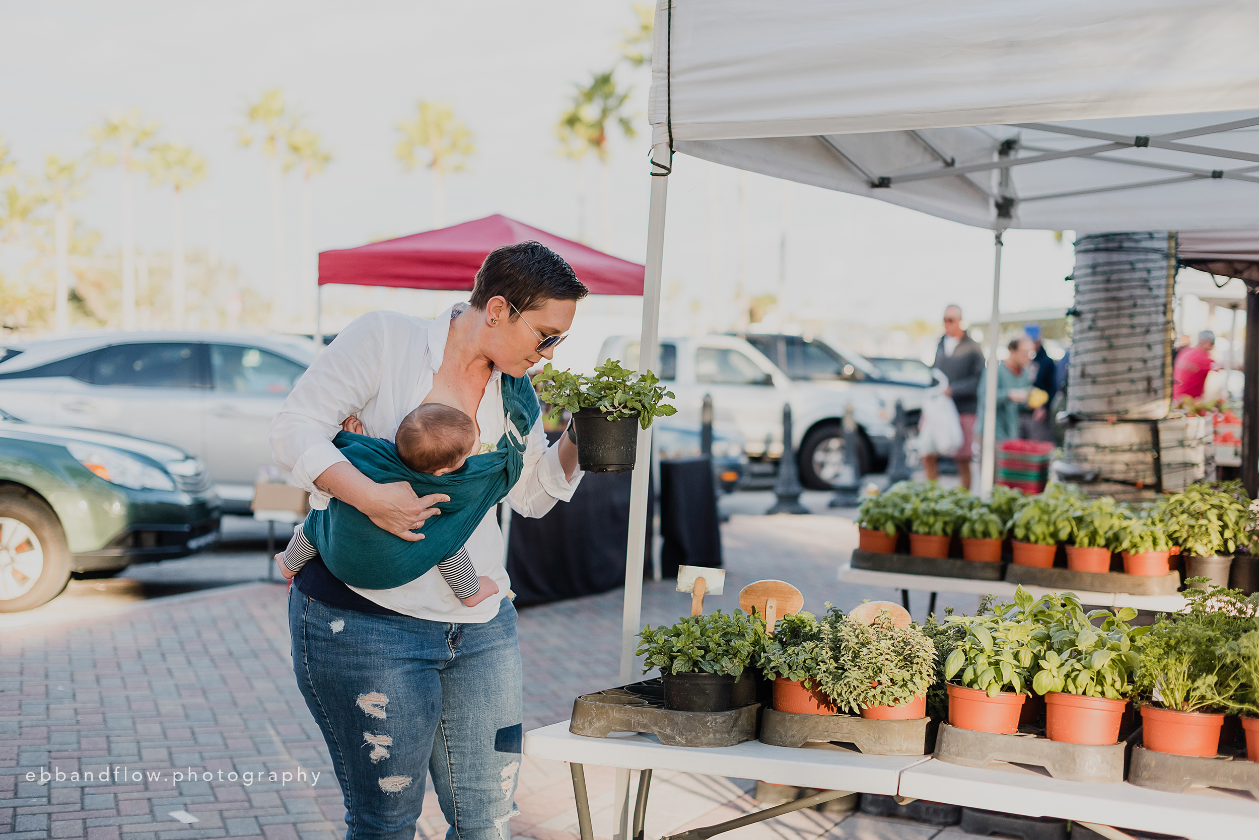 Fort Pierce Breastfeeding Photography - Ebb and Flow Photography -  Babywearing at the Farmers Market.jpg