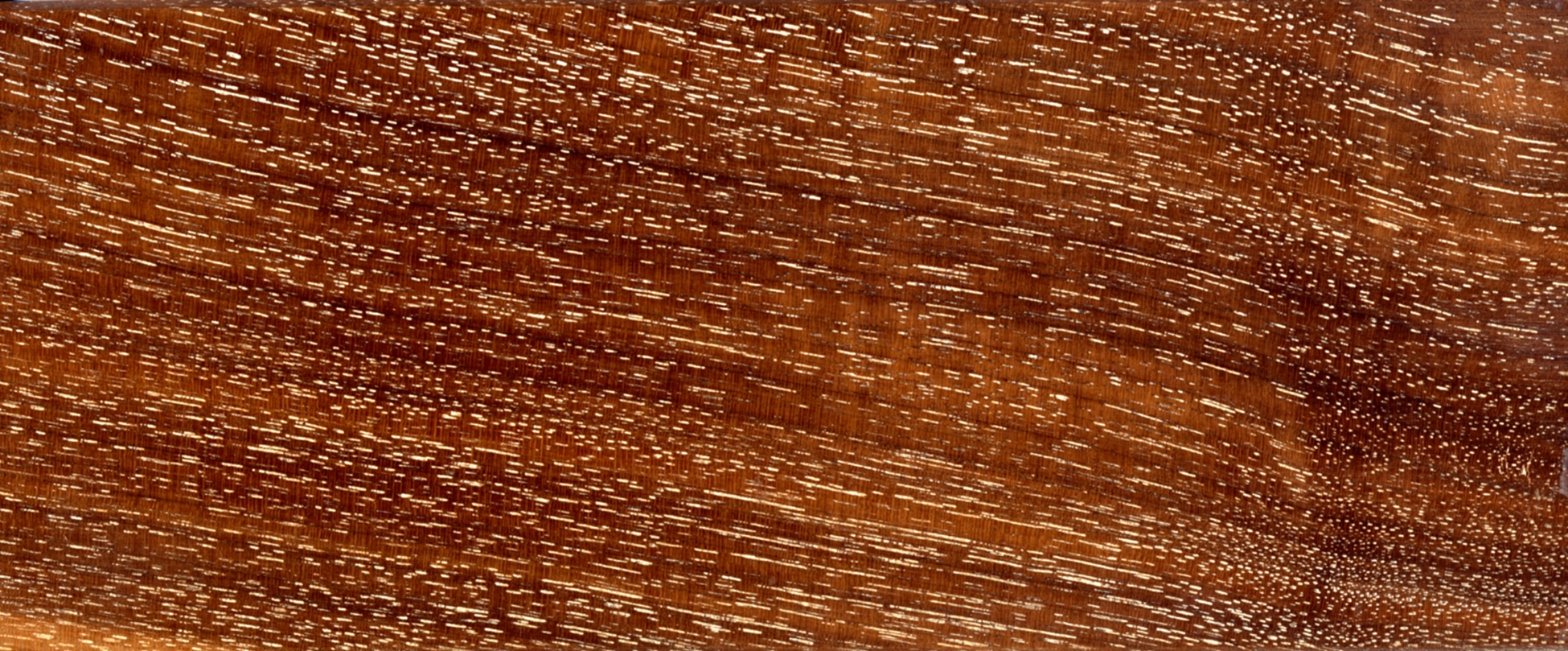 walnut - limed and oiled