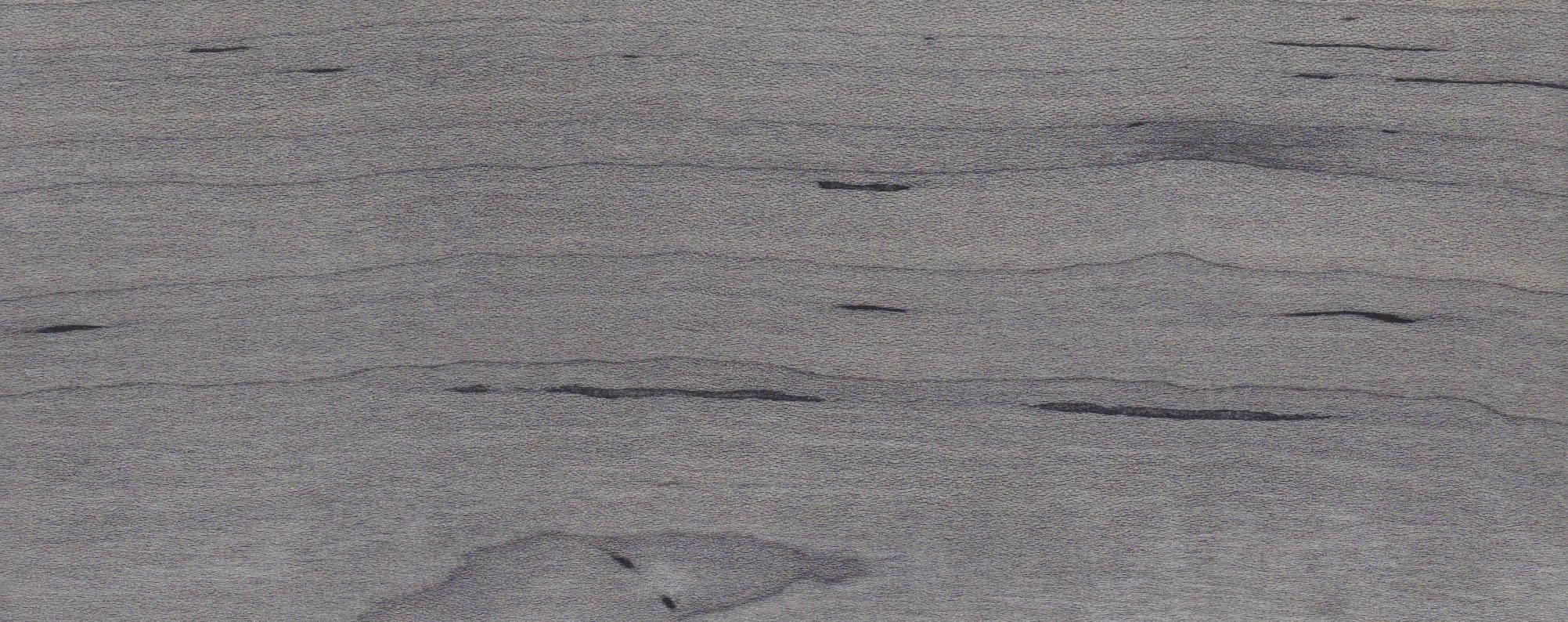 steel grey maple