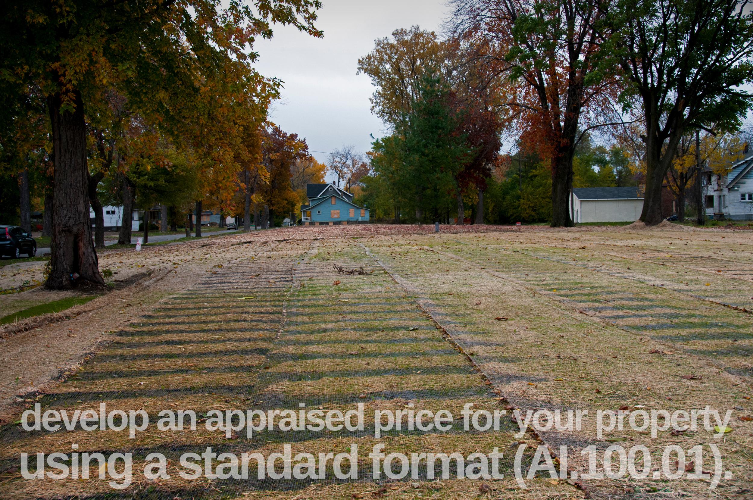 31-Leveled+Field-standard+form-3578945967-O.jpg