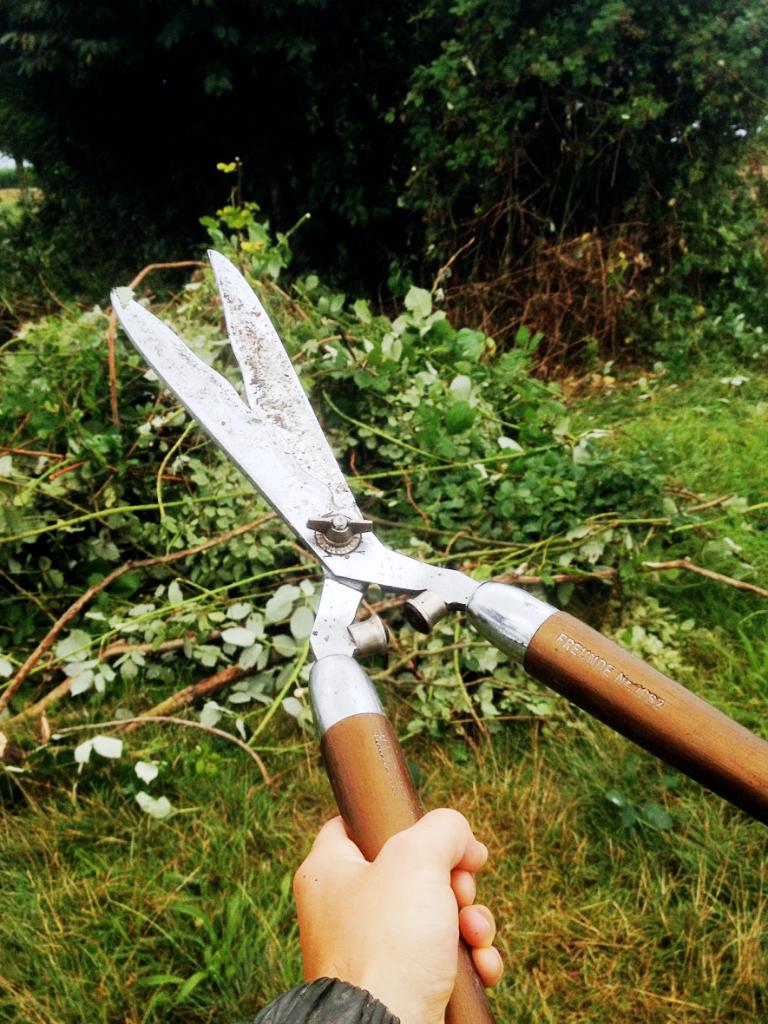 鋒利的園藝剪刀