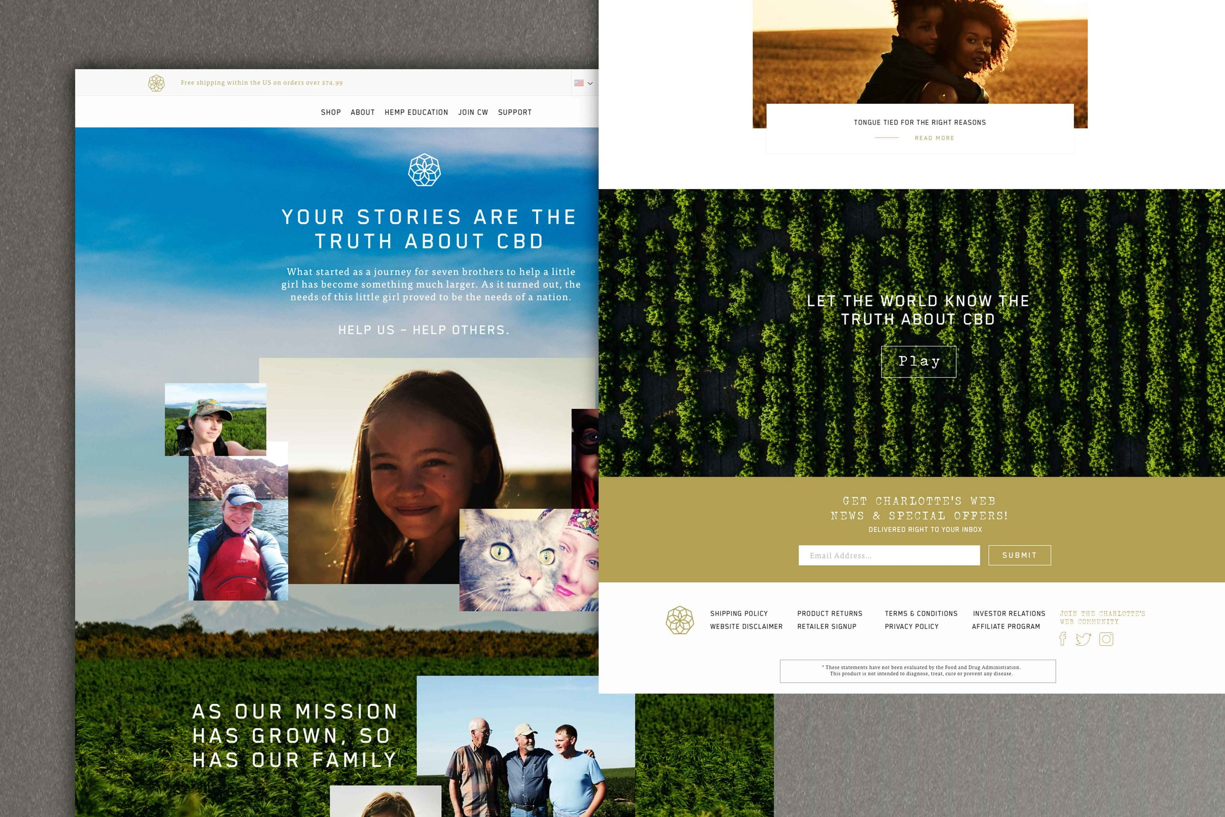 Charlottes_Web_landing_page_thumbnail.jpg