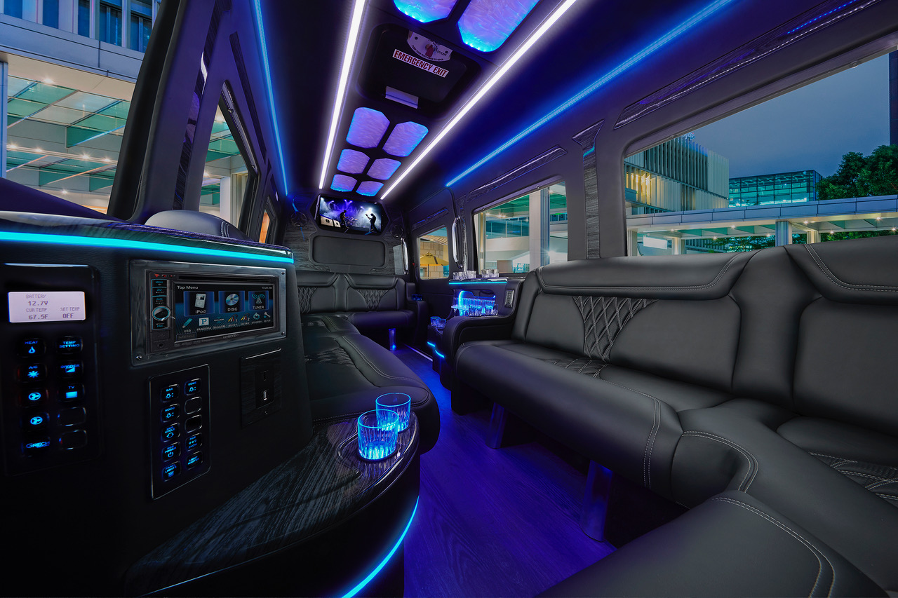 Limo_0150_v20_ low_res.jpeg